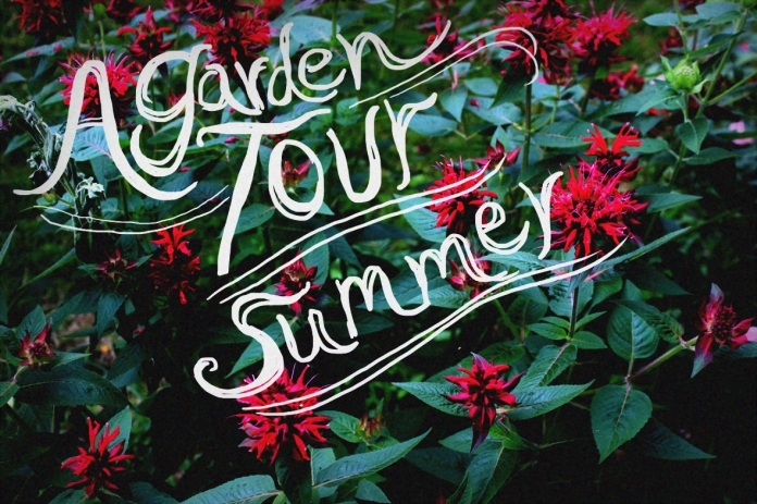 garden tour 2013-01-07 15-49-