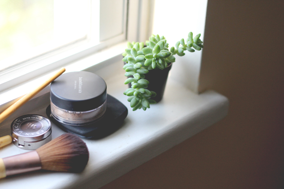Makeup-succulent-windowsill