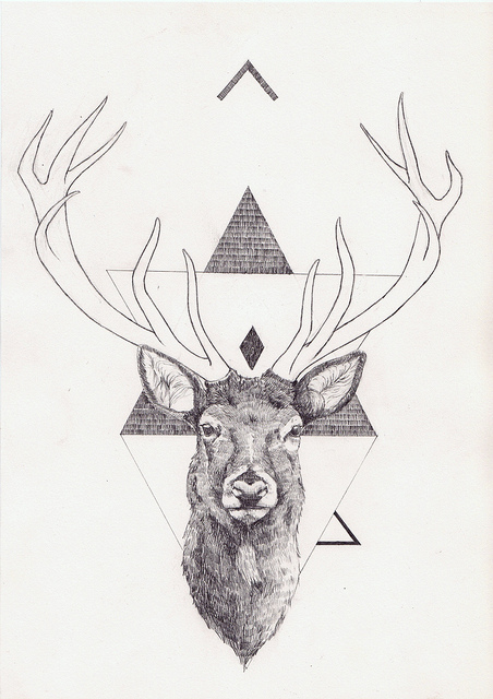 deer head drawing tumblr - photo #26